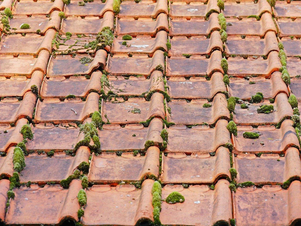nokvorst reparatie, nokvorst renovatie in 5087 Diessen