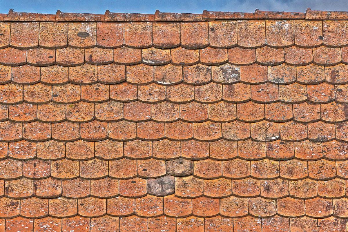 nokvorst reparatie, nokvorst renovatie in 5427 Boekel