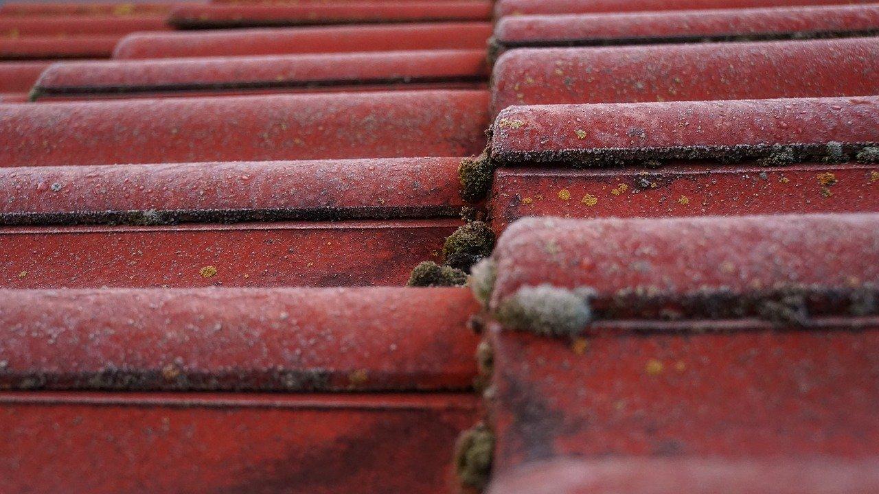 nokvorst reparatie, nokvorst renovatie in 5107 Dongen